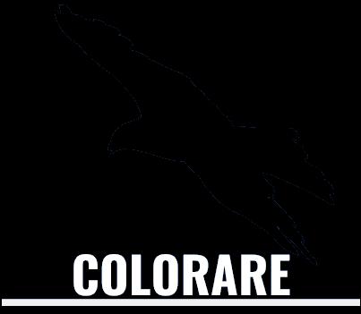 Colorare