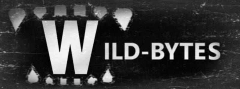 wild-bytes