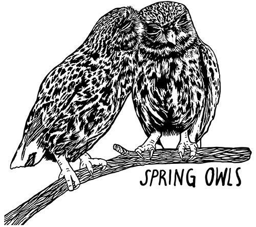 Spring Owls, LLC
